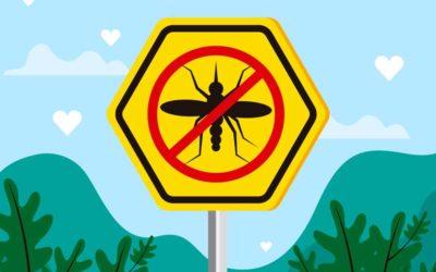 """Infotag """"Insektenschutz nach Maß"""" am 7. April 2019"""